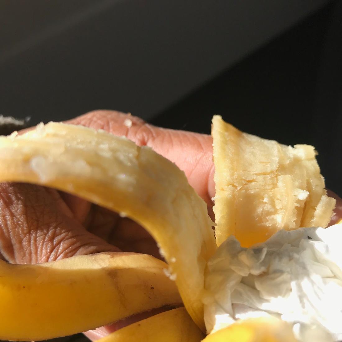 Conceptual banana poem-015.jpg.jpg